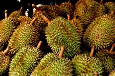 Articole culinare : Durian, putoare și savoare
